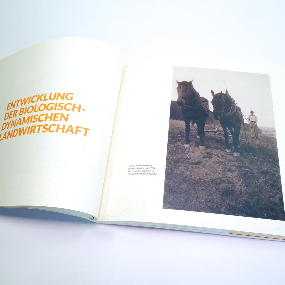 Talhof Unternehmensgeschichte Demeter biologisch dynamisch Heidenheim Voith, 02