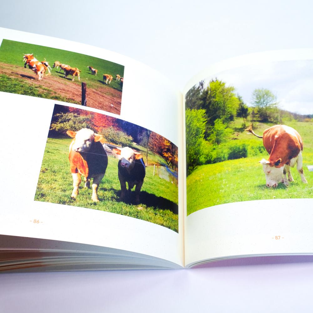 Talhof Unternehmensgeschichte Demeter biologisch dynamisch Heidenheim Voith, 08
